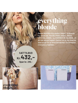 Kevin Murphy EVERYTHING BLONDE sæt 2 x ANGEL ä 250ml + SHIMMER.ME BLONDE 150ml-20